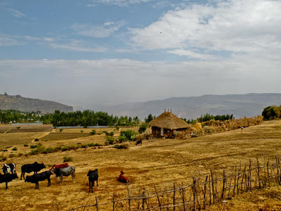 Volunteering in Ethiopia, you may encounter rural farms such as this one.