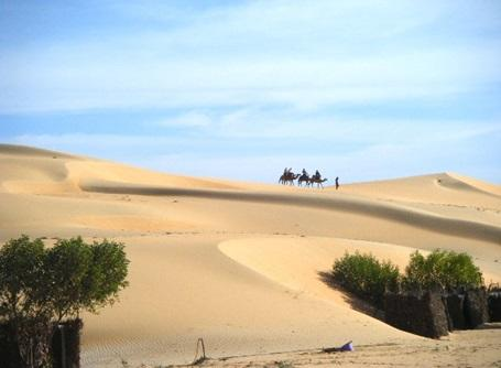 A view of a desert in Senegal, with men riding on their camels