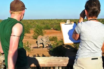 Conservation volunteers in South Africa observe elephants