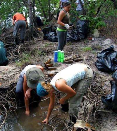 Volunteers in Thailand help with mangrove reforestation