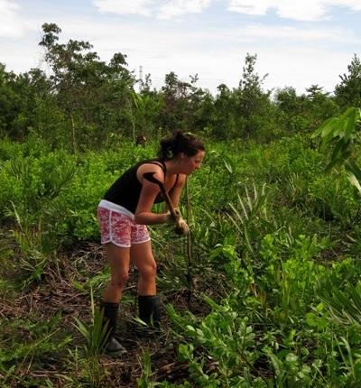 Volunteers help clear invasive plants in Thailand