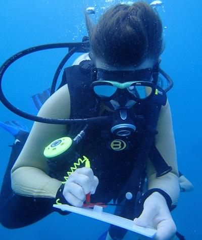 A volunteer doing research under water in Fiji
