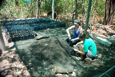 Volunteers prepare seeds to be planted in Costa Rica forest
