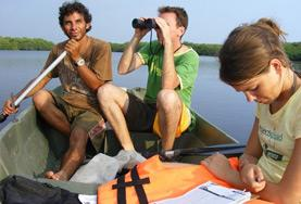 Conservation volunteers and local staff from a rescue and rehabilitation centre survey the wildlife around a lagoon in Mexico.