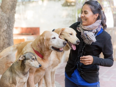 Dogs and a therapist at Fundación Jingles in Córdoba, Argentina