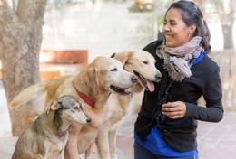 A qualified veterinarian volunteer spends time with dogs at an animal shelter in Argentina.