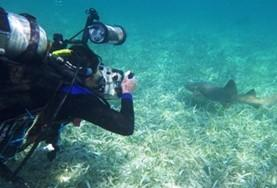 A High School Special volunteer on a scuba dive at a placement in Belize